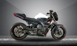 Escape XJ6 Willy Made Firetong