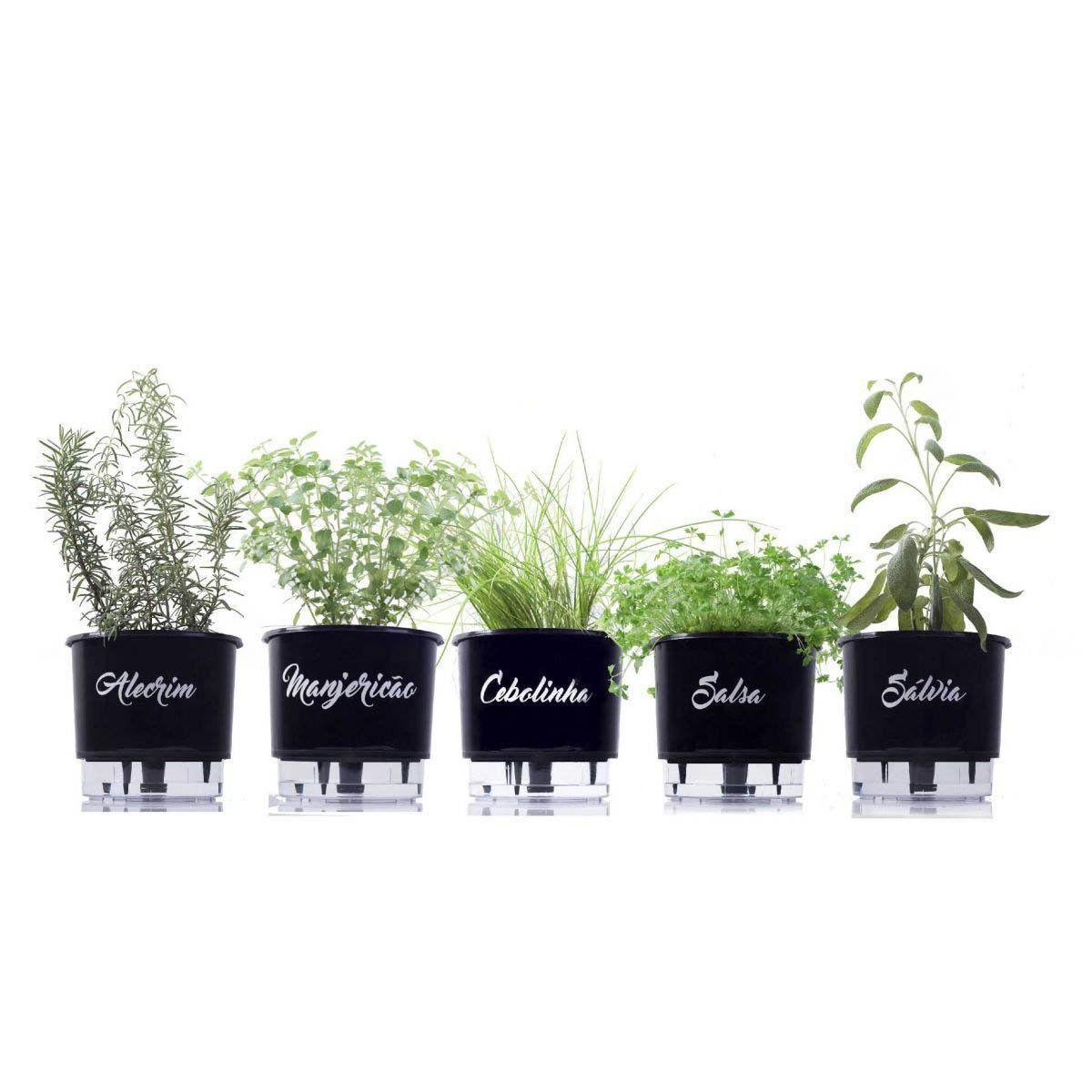 10 Vasos autoirrigáveis Linha Gourmet Preto Médio N03 Coleção Completa