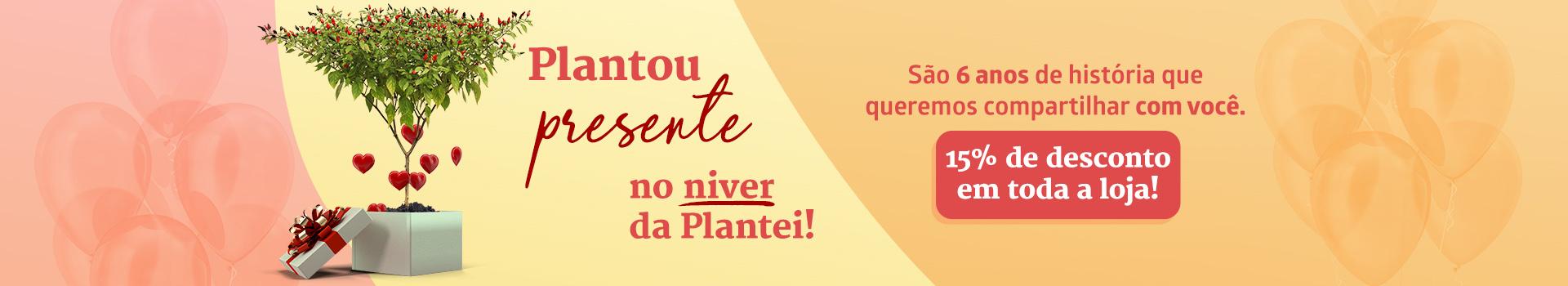 6 ANOS DE PLANTEI