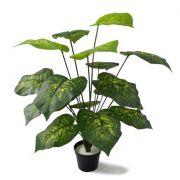 Comigo Ninguém Pode Arbusto Artificial Fixada em Vaso com Gesso 60cm