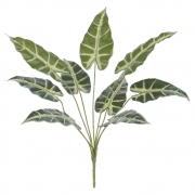 Folhagem Alocasia Artificial Real Toque X9 Verde 43cm - 42495006