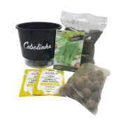 Kit Completo Inicial Preto: Meu Primeiro Plantio de Cebolinha + Manual de plantio