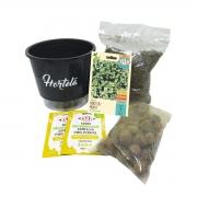 Kit Completo Inicial Preto: Meu Primeiro Plantio de Hortelã + Manual de plantio