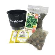 Kit Completo Inicial Preto: Meu Primeiro Plantio de Manjericão + Manual de plantio
