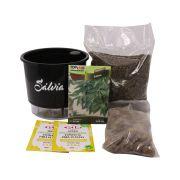 Kit Completo Inicial Preto: Meu Primeiro Plantio de Sálvia + Manual de plantio