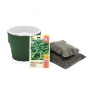 Kit completo Meu Primeiro Plantio de Manjericão com Vaso Autoirrigável Verde Botânico Linha Plantar