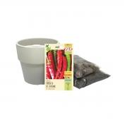 Kit completo Meu Primeiro Plantio de Pimenta Cayenne com Vaso Autoirrigável Bege Linha Plantar