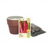 Kit completo Meu Primeiro Plantio de Pimenta Cayenne com Vaso Autoirrigável Terracota Linha Plantar