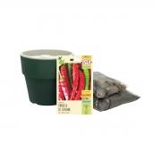 Kit completo Meu Primeiro Plantio de Pimenta Cayenne com Vaso Autoirrigável Verde Botânico Linha Plantar