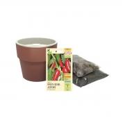 Kit completo Meu Primeiro Plantio de Pimenta Jalapenho com Vaso Autoirrigável Terracota Linha Plantar