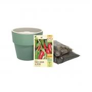 Kit completo Meu Primeiro Plantio de Pimenta Jalapenho com Vaso Autoirrigável Verde Menta Linha Plantar