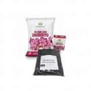 Kit Manutenção de Rosa do Deserto