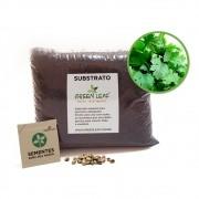 Kit para Plantio de Coentro Verdão Green Leaf