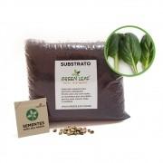 Kit para Plantio de Couve Tatsoi Xangai Green Leaf