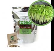 Kit para Plantio de Microverdes de Agrião do Seco Green Leaf