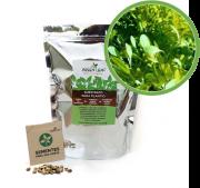 Kit para Plantio de Microverdes de Alface Green Leaf