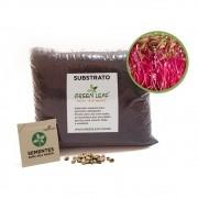 Kit para Plantio de Microverdes de Beterraba Green Leaf