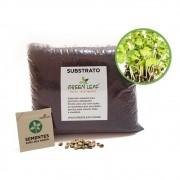 Kit para Plantio de Microverdes de Couve Mahara Green Leaf