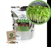 Kit para Plantio de Microverdes de Mostarda Lisa Green Leaf