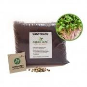 Kit para Plantio de Microverdes de Rabanete Indra Green Leaf