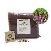 Kit para Plantio de Microverdes de Repolho Green Leaf