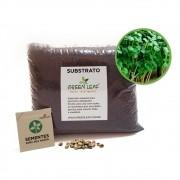 Kit para Plantio de Microverdes de Rúcula Folha Larga Green Leaf
