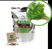Kit para Plantio de Salsa Lisa Green Leaf