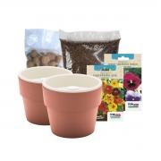 Kit Plantio de Flores Comestíveis com Vasos Linha Plantar Terracota
