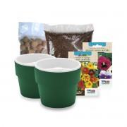 Kit Plantio de Flores Comestíveis com Vasos Linha Plantar Verde Botânico