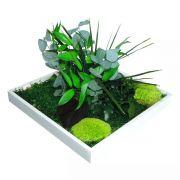 Quadro Verde Estabilizado 31 x 31cm