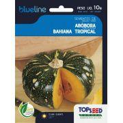 Sementes de Abóbora Bahiana Tropical 10g - Topseed Blue Line
