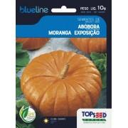 Sementes de Abóbora Moranga Exposição 10g - Topseed Blue Line