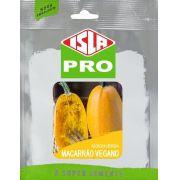 Sementes de Abobrinha Macarrão Vegano Híbrida Envelope com 20 Sementes (3,3g) - Isla Pro