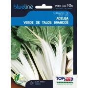 Sementes de Acelga Verde de Talos Brancos 10g - Topseed Blue Line