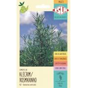 Sementes de Alecrim / Rosmarino - Isla Multi