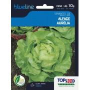 Sementes de Alface Aurélia 10g - Topseed Blue Line