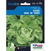 Sementes de Alface Babá de Verão 10g - Topseed Blue Line