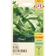Sementes de Alface Boston Branca (Manteiga) - Isla Multi