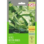 Sementes de Alface Boston Branca (manteiga) - Isla Superpak