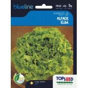Sementes de Alface Elba 5g - Topseed Blue Line