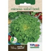 Sementes de Alface Mimosa Salad Bowl 700mg - Topseed Linha Tradicional