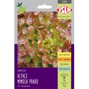 Sementes de Alface Prado Mimosa Roxa - Isla Superpak