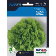 Sementes de Alface Regina 5g - Topseed Blue Line