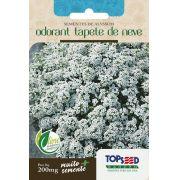 Sementes de Alyssum Odorant Tapete de Neve 200mg - Topseed Linha Tradicional Flores