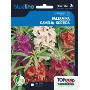 Sementes de Balsamina Camélia Sortida 3g - Topseed Blue Line
