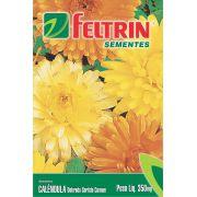 Sementes de Calêndula Dobrada Sortida ou Bonina - Feltrin Linha Flores