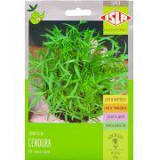 Sementes de Cenoura Brasilia Microverdes 5g - Isla Superpak