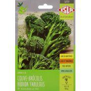 Sementes de Couve-Brócolis Híbrida Fabulous 400mg - Isla Superpak