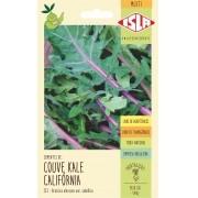Sementes de Couve Kale Califórnia - Isla Multi
