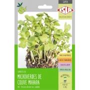 Sementes de Couve Manteiga da Georgia Mahara Microverdes 6g - Isla Superpak